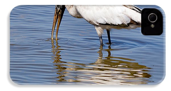 Wood Stork IPhone 4 / 4s Case by Louise Heusinkveld