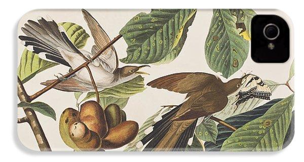 Yellow Billed Cuckoo IPhone 4 / 4s Case by John James Audubon