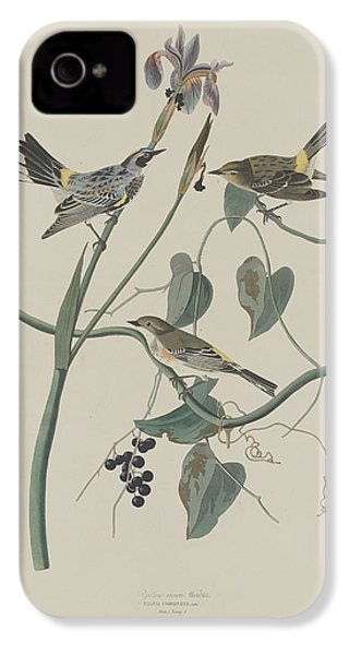 Yellow-crown Warbler IPhone 4 / 4s Case by John James Audubon