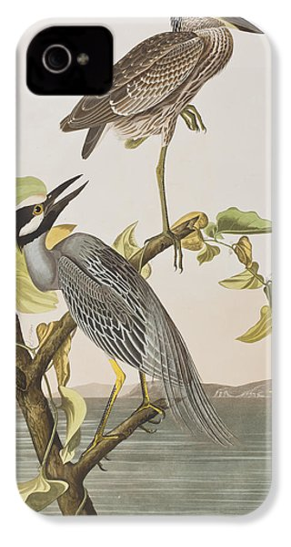 Yellow Crowned Heron IPhone 4 / 4s Case by John James Audubon