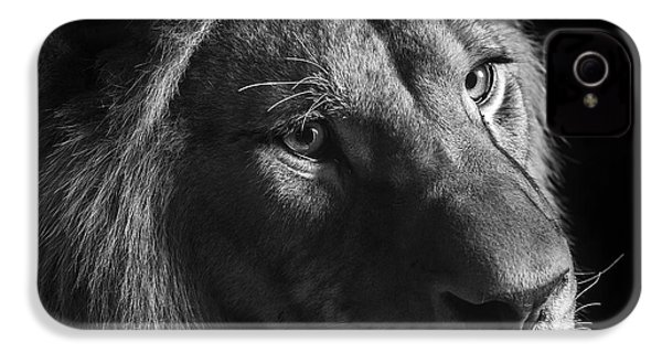 Young Lion In Black And White IPhone 4 / 4s Case by Lukas Holas