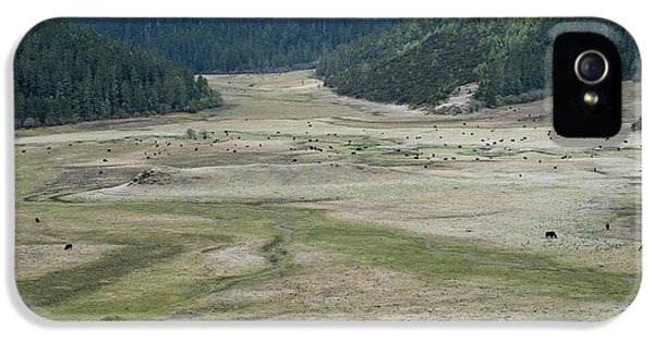 A Herd Of Yaks In Potatso National Park IPhone 5 / 5s Case by Tony Camacho