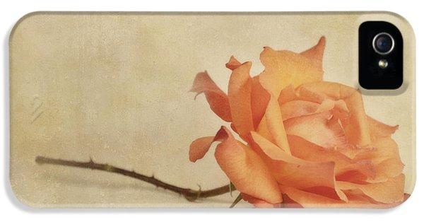 Roses iPhone 5 Cases - Bellezza iPhone 5 Case by Priska Wettstein