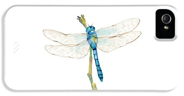 Blue Dragonfly IPhone 5 / 5s Case by Amy Kirkpatrick