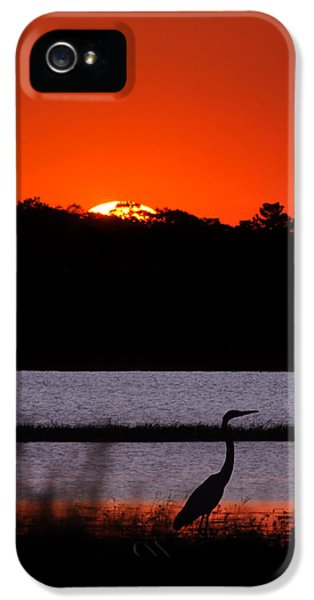 Sillouette iPhone 5 Cases - Break of Day iPhone 5 Case by Adele Moscaritolo
