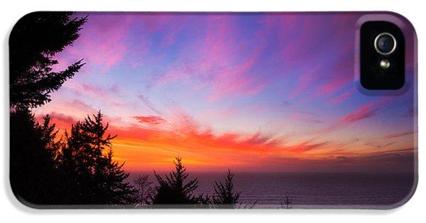 Oregon Coast Landscapes iPhone 5 Cases - Coastal Skies iPhone 5 Case by Darren  White