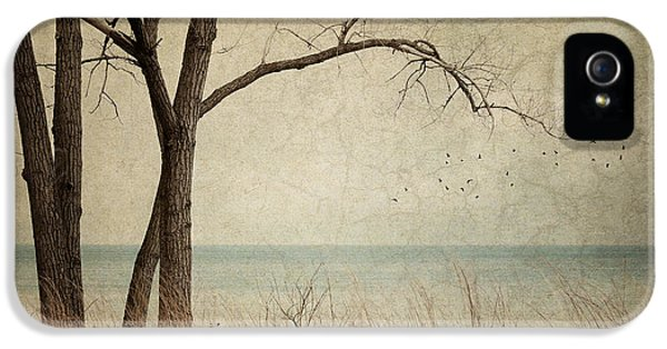 Lake Michigan iPhone 5 Cases - Drifting iPhone 5 Case by Amy Weiss