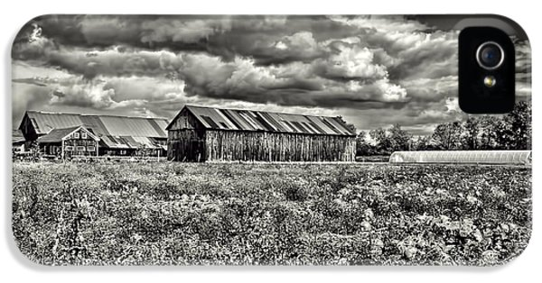 Farmland iPhone 5 Cases - Farm iPhone 5 Case by HD Connelly