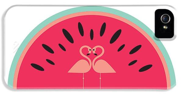 Flamingo Watermelon IPhone 5 / 5s Case by Susan Claire