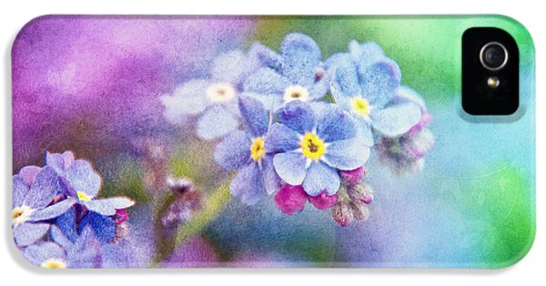 Forget Me Not iPhone 5 Cases - Forget Me Not iPhone 5 Case by Viaina