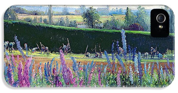 Lupin iPhone 5 Cases - Hoeing Against The Hedge iPhone 5 Case by Timothy Easton