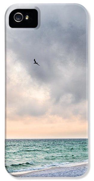 Wednesday iPhone 5 Cases - Into the Sunset iPhone 5 Case by Shelby  Young
