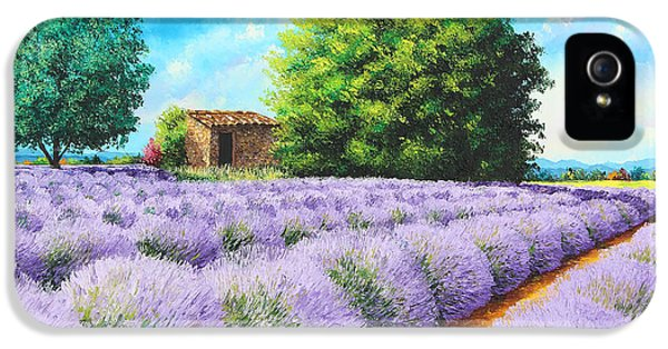 Jeans iPhone 5 Cases - Lavender Lines iPhone 5 Case by Jean-Marc Janiaczyk