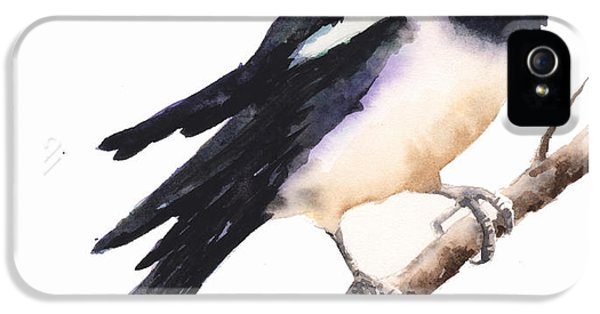 Magpie Painting IPhone 5 / 5s Case by Alison Fennell