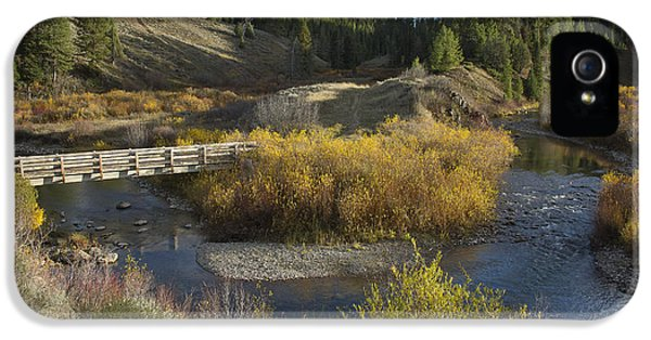 Caribou iPhone 5 Cases - McCoy Creek iPhone 5 Case by Idaho Scenic Images Linda Lantzy
