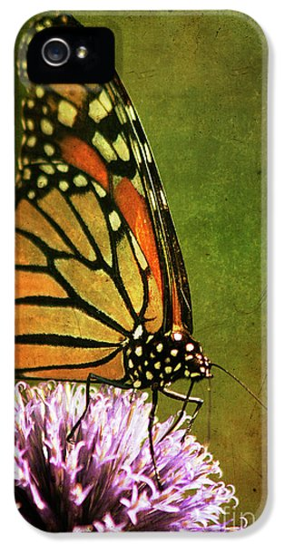 Monarch IPhone 5 / 5s Case by Cindi Ressler