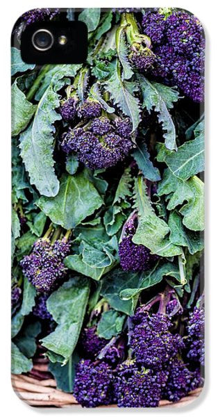 Purple Sprouting Broccoli IPhone 5 / 5s Case by Aberration Films Ltd