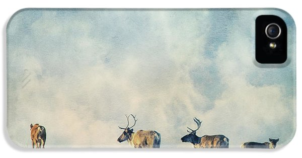 Caribou iPhone 5 Cases - Roam Free iPhone 5 Case by Priska Wettstein