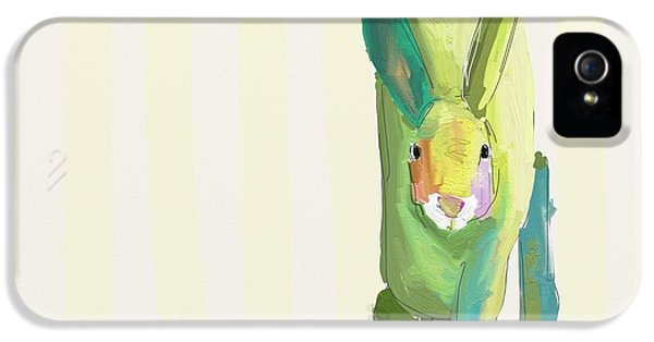 Bunny iPhone 5 Cases - Running Bunny iPhone 5 Case by Cathy Walters