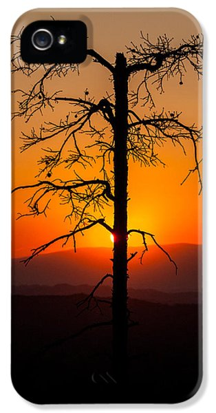 End Of Days iPhone 5 Cases - Serenity iPhone 5 Case by Davorin Mance