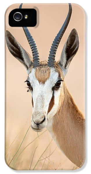 Eat iPhone 5 Cases - Springbok portrait iPhone 5 Case by Johan Swanepoel