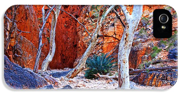 Mcdonnell iPhone 5 Cases - Stanley Chasm iPhone 5 Case by Bill  Robinson