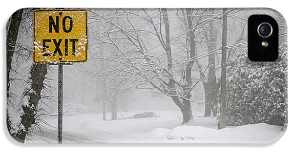 Condition iPhone 5 Cases - Winter road during snowfall IV iPhone 5 Case by Elena Elisseeva