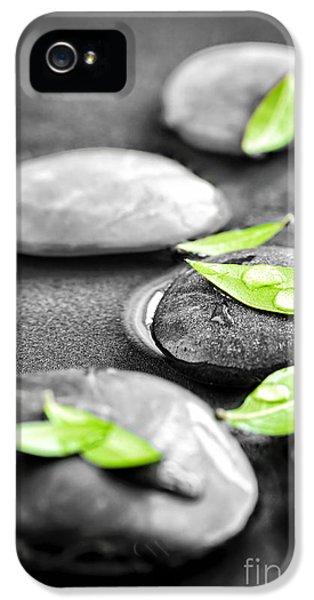 Medicine iPhone 5 Cases - Zen stones iPhone 5 Case by Elena Elisseeva