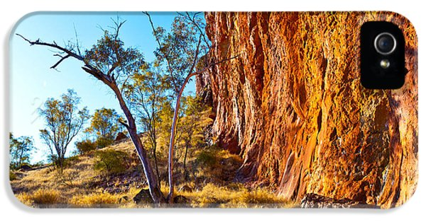 Mcdonnell iPhone 5 Cases - Glen Helen Gorge iPhone 5 Case by Bill  Robinson