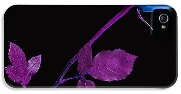 Rose Collection IPhone 5 / 5s Case by Marvin Blaine