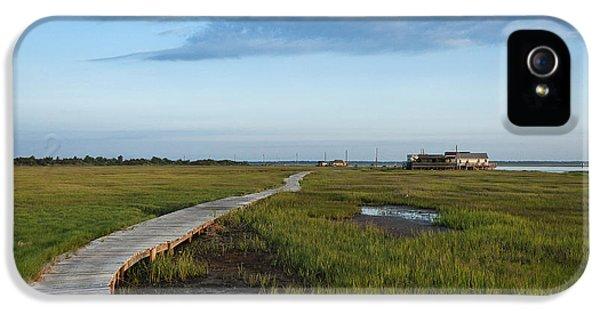 Shanty iPhone 5 Cases - Coastal Cottage iPhone 5 Case by John Greim