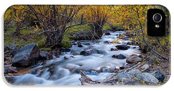 River iPhone 5 Cases - Fall at Big Pine Creek iPhone 5 Case by Cat Connor