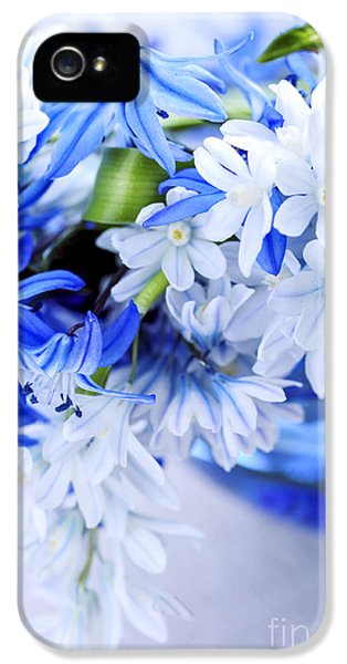 Tenderness iPhone 5 Cases - First spring flowers iPhone 5 Case by Elena Elisseeva