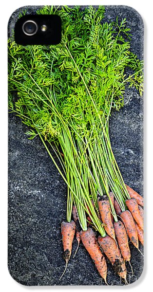 Carrot iPhone 5 Cases - Fresh carrots from garden iPhone 5 Case by Elena Elisseeva