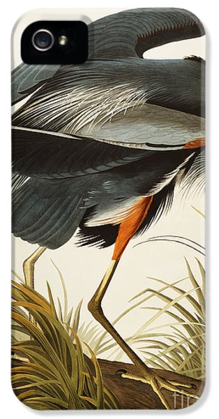 Great Blue Heron IPhone 5 / 5s Case by John James Audubon