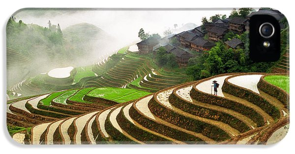 Farmland iPhone 5 Cases - Rice Terraces iPhone 5 Case by King Wu