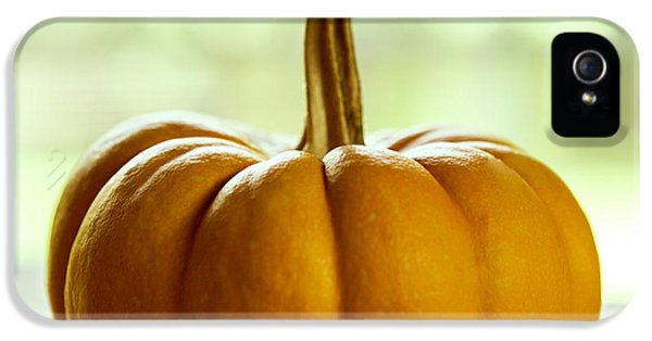 Small Orange Pumpkin IPhone 5 / 5s Case by Iris Richardson