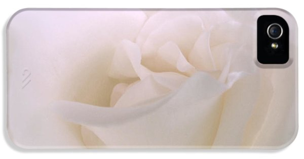 Softness Of A White Rose Flower IPhone 5 / 5s Case by Jennie Marie Schell