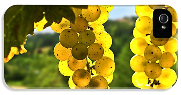 Yellow Grapes IPhone 5 / 5s Case by Elena Elisseeva
