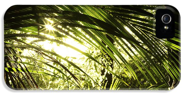 Bush iPhone 5 Cases - Tropical forest iPhone 5 Case by Les Cunliffe