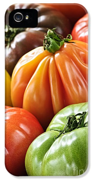 Multicolored iPhone 5 Cases - Heirloom tomatoes iPhone 5 Case by Elena Elisseeva
