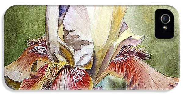 Stockings iPhone 5 Cases - Iris Painting iPhone 5 Case by Irina Sztukowski