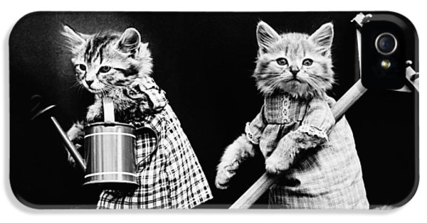 Frees Kittens, C1914 IPhone 5 / 5s Case by Granger