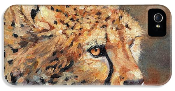 Cheetah IPhone 5 / 5s Case by David Stribbling