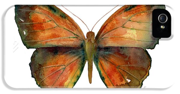 Copper iPhone 5 Cases - 56 Copper Jewel Butterfly iPhone 5 Case by Amy Kirkpatrick