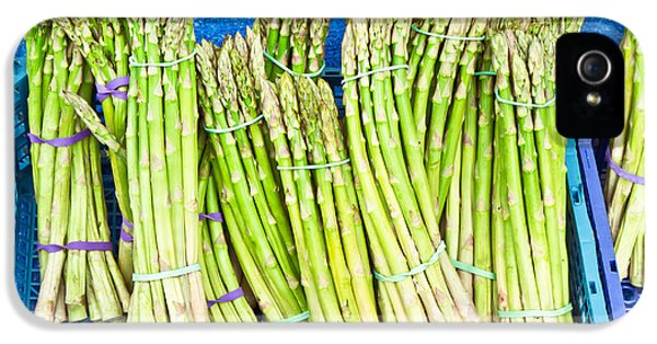 Bundle iPhone 5 Cases - Asparagus iPhone 5 Case by Tom Gowanlock