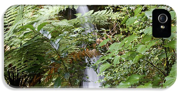 Ecology iPhone 5 Cases - Jungle stream iPhone 5 Case by Les Cunliffe
