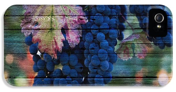 Fruit IPhone 5 / 5s Case by Joe Hamilton