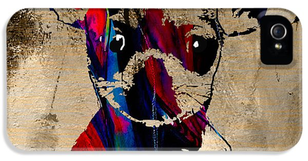 Chihuahua IPhone 5 / 5s Case by Marvin Blaine