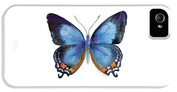 80 Imperial Blue Butterfly IPhone 5 / 5s Case by Amy Kirkpatrick